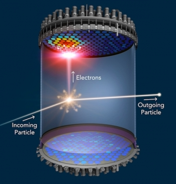 When a WIMP collides with a xenon atom, the xenon atom emits a flash of light (gold) and electrons. The flash is detected at the top and bottom of the liquid xenon chamber.