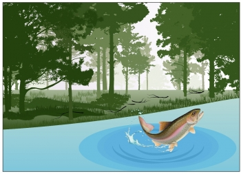 A drawn photo of a fish leaping out of a small pond, with trees in the background.