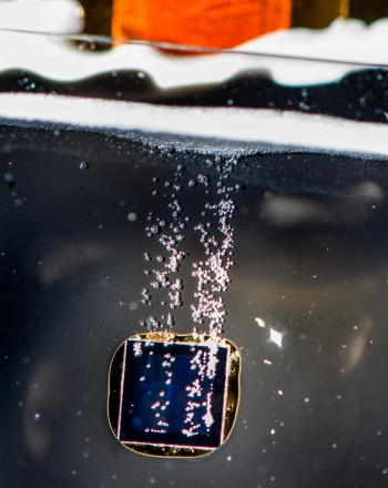 Hydrogen bubbles coming off a photelectrode immersed in electrolyte solution