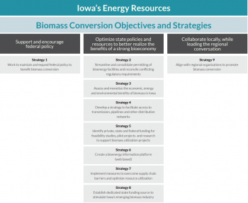 A three column graphic of biomass conversion objectives and strategies.