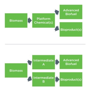 workflow process of bioproducts diagram