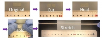 Scientists demonstrate the polymer healing process and recovery of extreme stretchability.