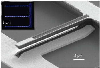 A scanning electron microscope image of a single-crystal diamond cantilever. This tiny device allows scientists to exert control over a quantum system (μm = micrometers).