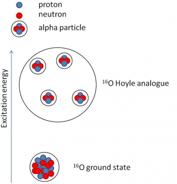 Pictorial representation of the ground state of oxygen-16 (16O) and the Hoyle-like state.