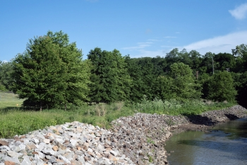 Riparian habitat will be expanded along Chartiers Creek at the Canonsburg, Pennsylvania Disposal Site.