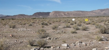 Walkover surveys provided important data on conditions after crews removed contaminated soil and debris in Area 5 at the Nevada National Security Site, leading to the safe and successful completion of corrective actions there.