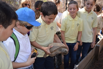 "Elementary school students marvel at a gopher tortoise on the ""Ecologist for a Day"" trail. The event at the Savannah River Site was organized by University of Georgia's Savannah River Ecology Laboratory."