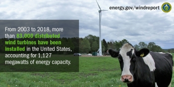 A cow stares towards the direction of the viewer in front of a small wind turbine.