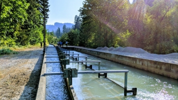Irrigation canal in Hood River, Oregon.