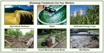Examples of bioenergy feedstock sources researched by BETO's FSL program.