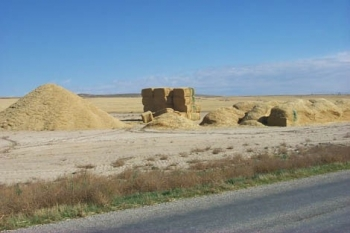 Three examples of storing biomass are shown in this photo—(from left to right), a loose pile of chopped material, a stack of large square bales, and in loaves. The green markings on the biomass serve the purpose of documenting the depth of moisture penetr