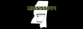 Salmon, Mississippi, Site
