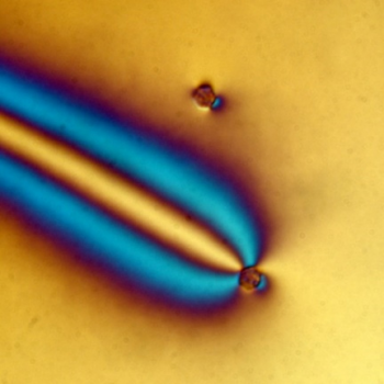 Shining different kinds of light on silica micro particles in a liquid crystal causes molecules around the particles to bend in different ways, providing a new way to assemble and manipulate atom-like systems called 'big atoms.'