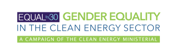 Equal by 30 logo for C3E International