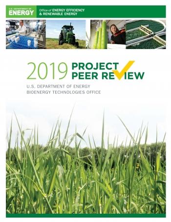 screenshot of the 2019 peer review report