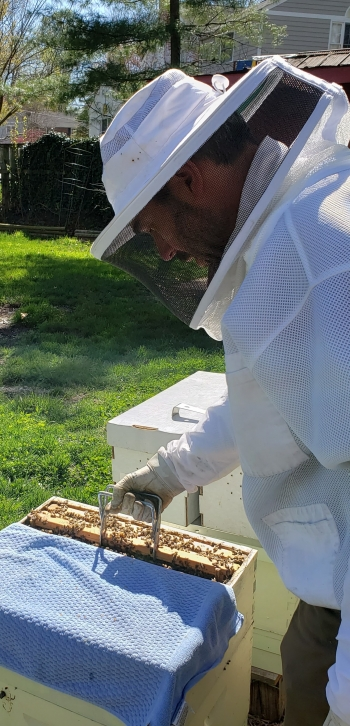 Randy Weidman tends to his bees.