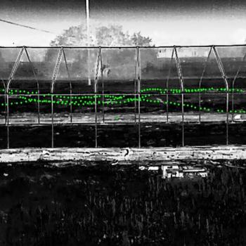 Photo of bat flight tracking.