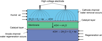 Diagram of various levels: Humid air on top, then catalyst layer, membrane, catalyst layer, and anode channel.