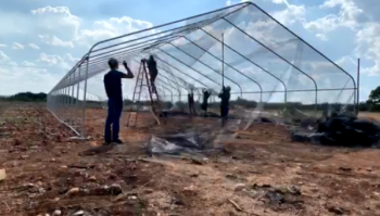 Humans construct an open-air flight cage outdoors.