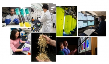 Collage of images depicting a variety of workers in the bioenergy industry: lab workers, equipment, etc.