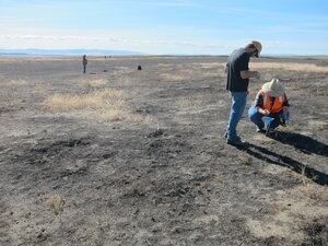 Archaeologists Keith Mendez, at left, and Mary Petrich-Guy with EM Richland Operations Office contractor Mission Support Alliance's cultural and historic resources program document an archaeological site on the Hanford Reach national monument, with an add