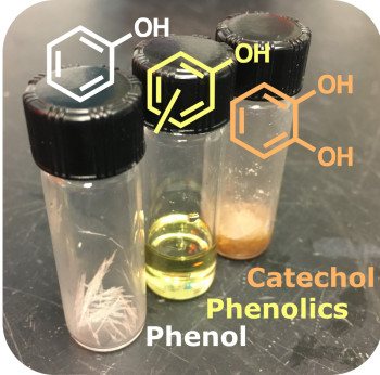 Oxygenated aromatics such as phenol (left), phenolics (center), or catechol (right) can be used in building material, automotive, plastics, or agricultural applications and have now been isolated from a biorefinery waste stream.