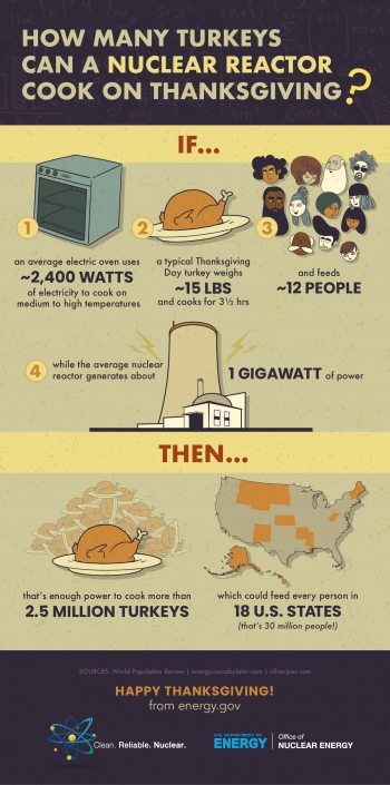How many turkeys can a reactor cook on Thanksgiving Day?