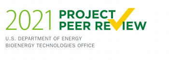 2021 Project Peer Review logo