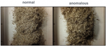 Examples of 'normal' vs 'anomalous' corn stover. Images were processed with models that identified characteristics such as stringiness in the anomalous material, which correlate with downstream process issues. Credit: NREL