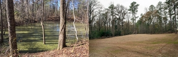 Before and after: A former waste basin near the center of the 300-square-mile Savannah River Site is shown at left prior to cleanup. Workers completed cleanup of the site, transforming it into an open field of grass, at right.