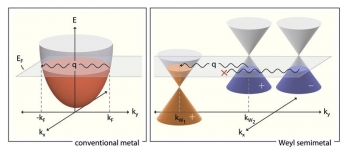 Energy versus momentum depiction of different conditions that give rise to a Kohn anomaly in ordinary metals (at left), versus a topological material called a Weyl semimetal (at right).