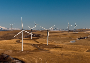 11. A Banner Year for Wind Energy