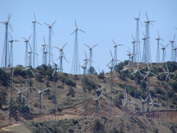 Photo of a large wind farm