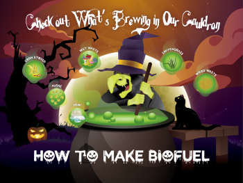 Photo of a witch stirring liquid in a cauldron with the title how to make biofuel.