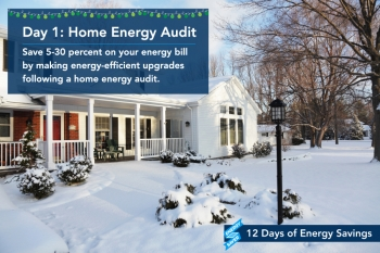 Day 1: Get a Home Energy Audit