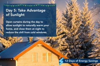 Day 5: Take Advantage of Sunlight