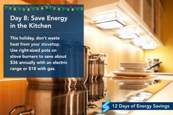 Day 8: Save Energy in the Kitchen