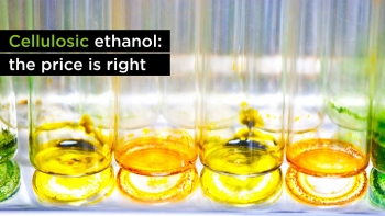 Cellulosic Ethanol: The Price is Right