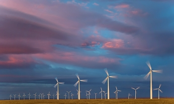 Photo of a field of wind turbines