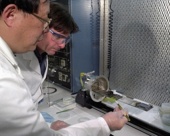 Solar Breakthroughs in the Lab