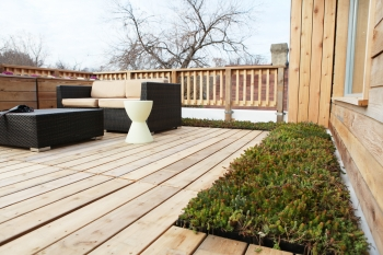 Green Rooftop Deck