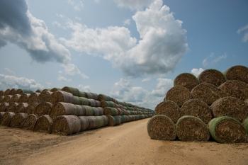 Stacking up biomass