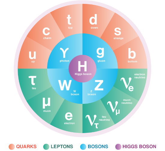 The Standard Model includes the matter particles (quarks and leptons), the force carrying particles (bosons), and the Higgs boson.
