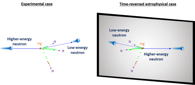 Snapshot of a nuclear reaction showing a high-energy neutron causing a carbon-12 atom to break apart into three alpha-particles, leaving a low-energy neutron (left). This is the reverse of how the process would occur in nature (right).