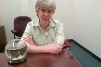 Picture of Carol Hawk, Program Manager of the Cybersecurity for Energy Delivery Systems (CEDS) Program