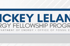 Mickey Leland Energy Fellowship Infographic