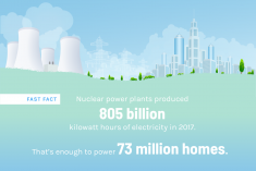 Nuclear fast facts infographic