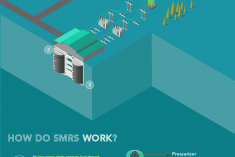 INFOGRAPHIC: Small Modular Reactors