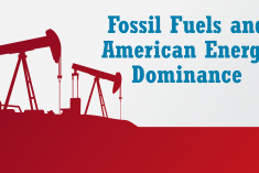 Thumbnail for Fossil Fuels and American Energy Dominance Infographic