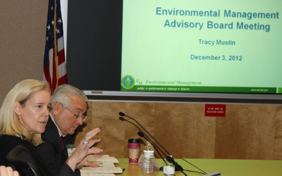 Environmental Management Advisory Board (EMAB)